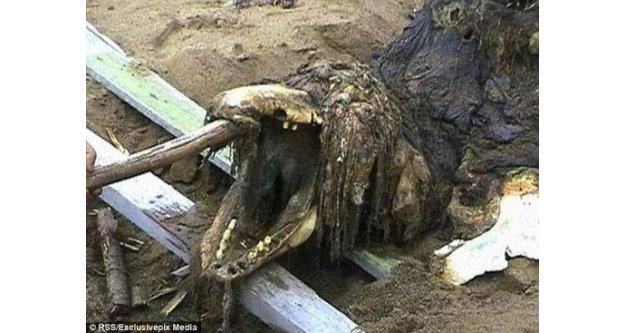 Sahildeki iskeleti görenler dehşete düştü!