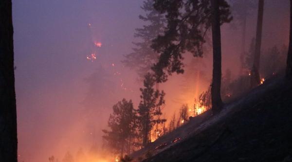 Saimbeyli'de Orman Yangını (3)