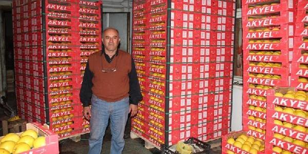Sakarya Ve Antalya'nin Ayva Kavgasi Patent Enstitüsüne Taşindi