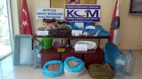 Sakarya'da 50 Kilo Bonzai Ele Geçirildi - Fotoğraflar