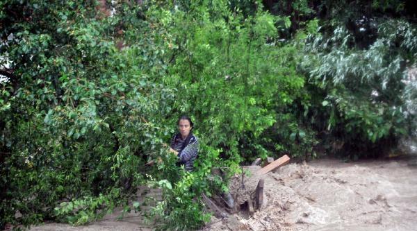 Sakarya'da Dereler Taştı, Birçok Köyü Sel Suları Bastı (2