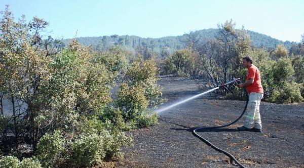 Salihli'de Makilik Alanda Yangın Çikti
