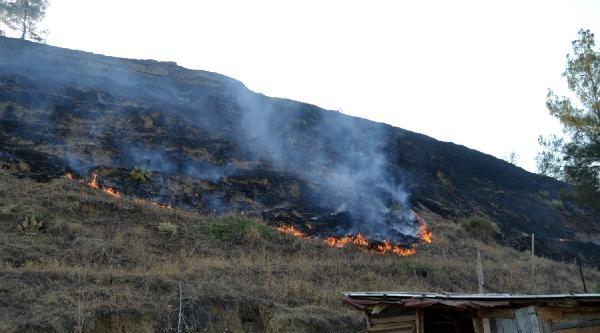 Salihli'de Orman Yangını
