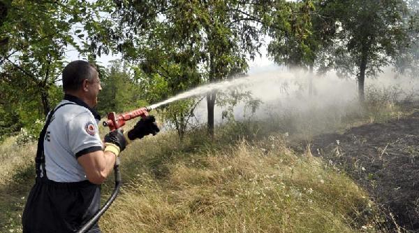 Samsun'da Ot Yangını
