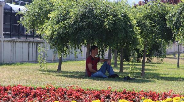 Samsun'da Sıcak Bunalttı