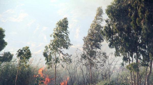 Sanayi Bölgesindeki Yangın Korkuttu