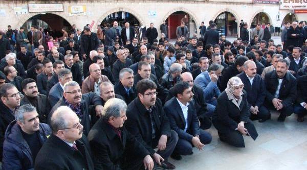 Şanliurfa Ve Kilis'te, Başbakan Erdoğan'a Destek Eylemleri