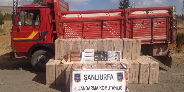 Şanliurfa'da 20 Bin Paket Kaçak Sigara Ele Geçirildi