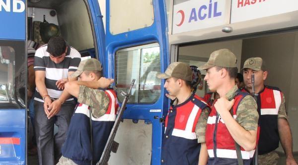 Şanliurfa'da Hayvan Hırsızlığına 3 Gözaltı