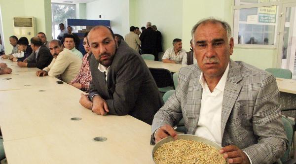 Şanliurfa'da Yılın İlk Mahsulüne Ödül