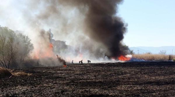 Sazlık Alanda Çikan Yangın 1.5 Saatte Söndürüldü