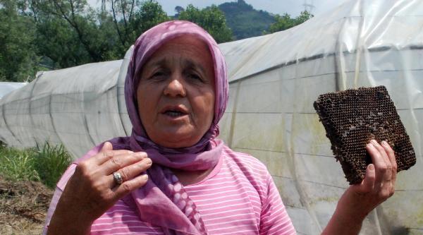 Sel Mağduru Kadın Çiftçiler Tepkili
