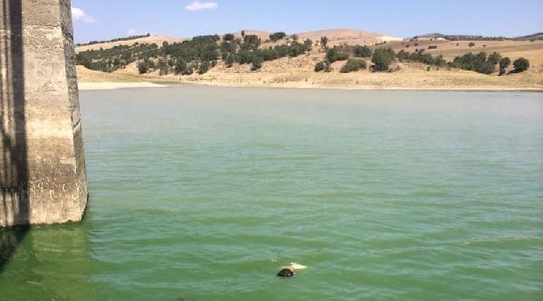 Serinlemek İçin Sulama Göletine 2 Genç Boğuldu