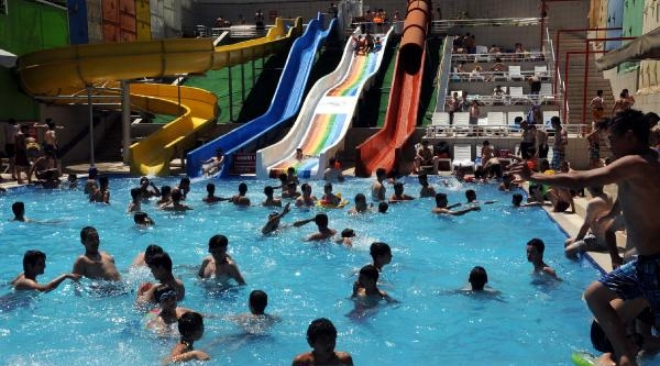 Sıcaktan Bunalanlar Havuza Akın Etti