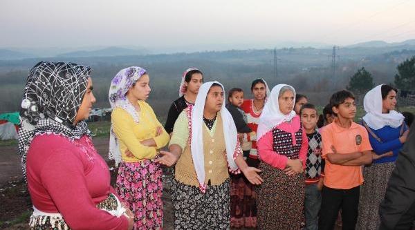 Şile'de Çadirlarda Yaşayan Romanlar, Toki Evlerini Bekliyor