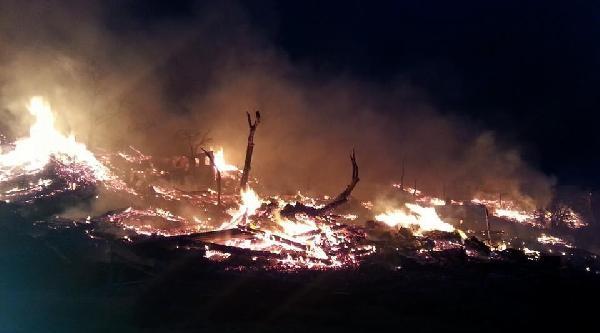 Sinop'ta 31 Ev Tamamen Yandı - Ek Fotoğraf