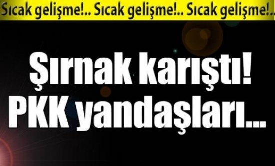 Şırnak karıştı! PKK yandaşları...