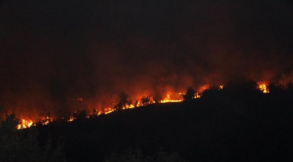 Şirnak'ta Orman Yangına Köylüler Müdahale Ediyor