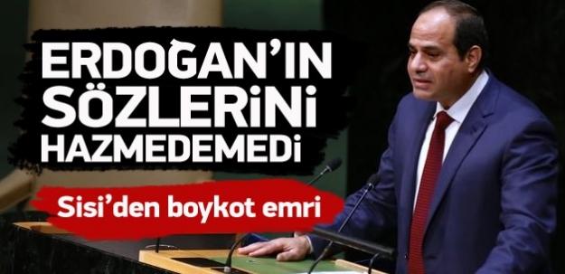 Sisi, Erdoğan'ın sözlerini hazmedemedi