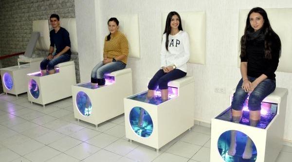 Sivas'in Doktor Baliklari Sağlik Ve Güzelliğin Hizmetinde