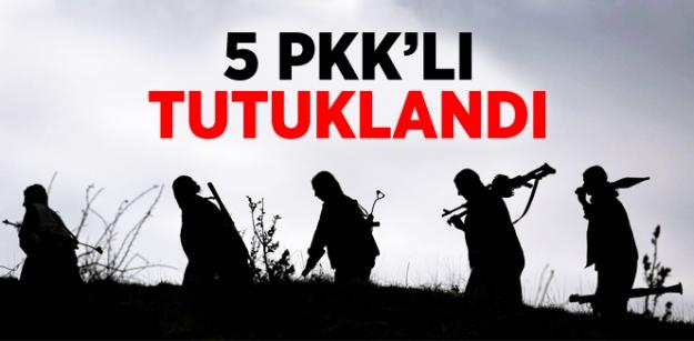 Sivas'ta 5 PKK'lı Tutuklandı