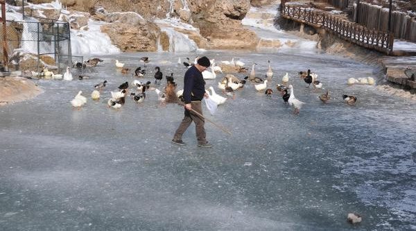 Sivas'ta Dondurucu Soğuk Hayati Felç Etti