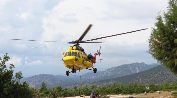 Slovak Pilotlar Ormanları Koruyacak