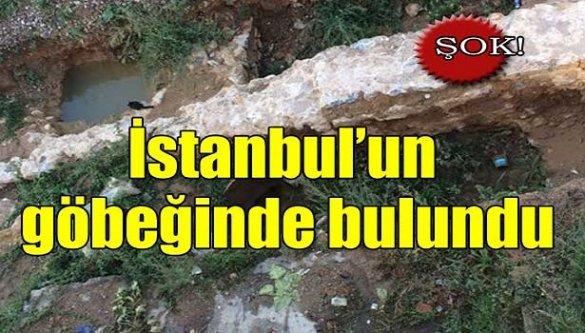 Şok! İstanbul'un göbeğinde bulundu!