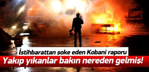 Şok rapor: Kobani'den gelip sokağa çıktılar