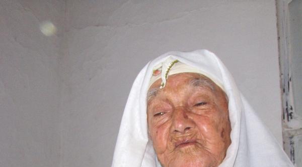 Söke En Yaşlı Çinarini Kaybetti