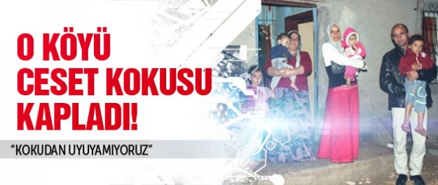 Suruç'un köylerini ceset kokusu kapladı!