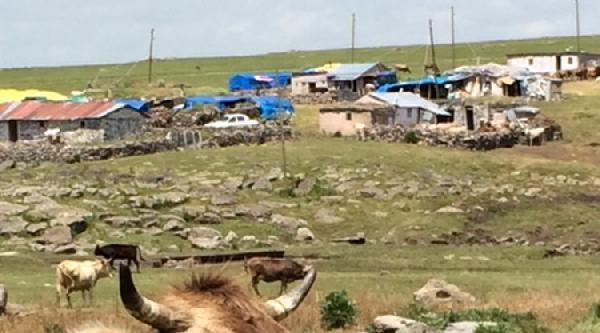 Susuz'da Kuduza Aşılı Önlem