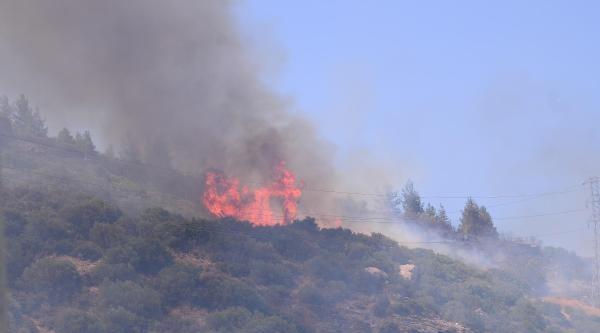 Tahtalı'da Orman Yangını (2)