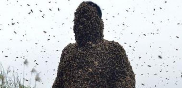 Tam 460 bin arı vücudunu kapladı....