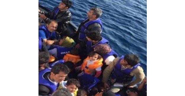 Tam 827 kaçak göçmen kurtarıldı