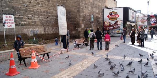 Tarihi Kaleyi Korumak Için Güvercinlere Yem Atmak Yasaklandi
