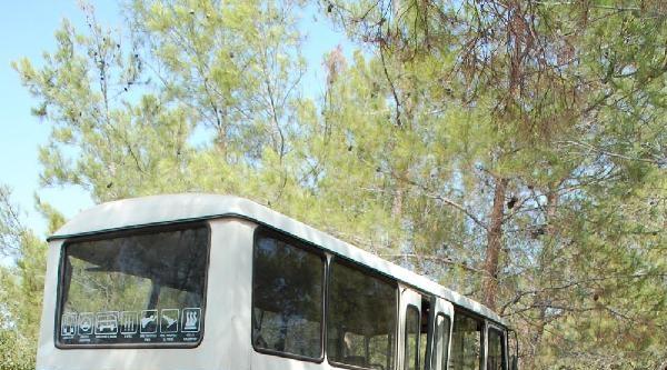 Tarım İşçilerini Taşıyan Minibüs Kaza Yaptı: 1 Ölü 6 Yaralı