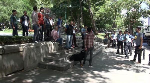 Tasmasız - Bağsız Gezdirilen Köpek Gezi Parkı'nda Adres Soran Kişiye Saldırdı