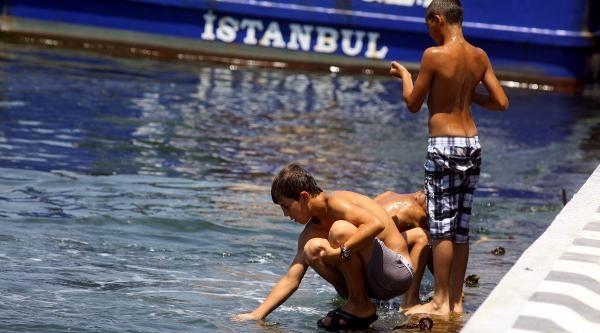 Tehlikeli Yüzüş