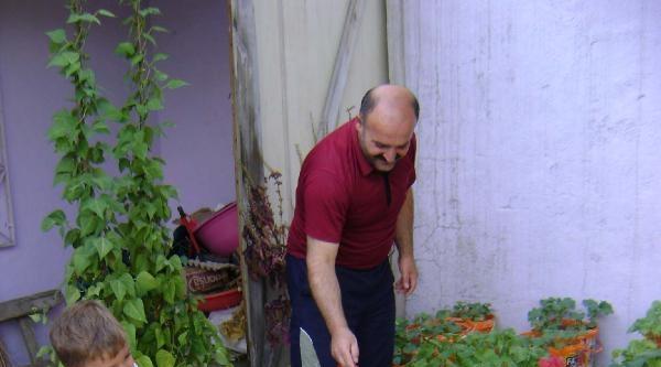 Terasını Sebze Bahçesine Çevirdi