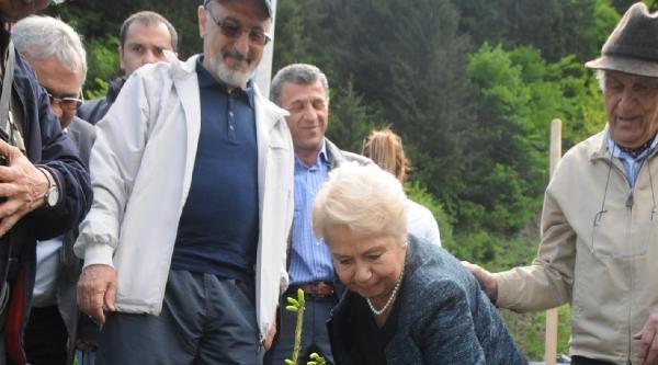 Tev'in 47'nci Yılında Uzungöl'e 47 Fidan