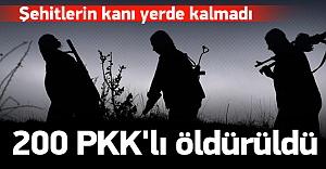 5 dalgada 200#039;e yakın PKK#039;lı...