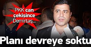 PKK köşeye sıkıştı, Demirtaş...