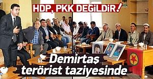 Demirtaş'tan PKK'lılara taziye ziyareti