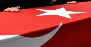 Cizre'den acı haber: 2 şehit