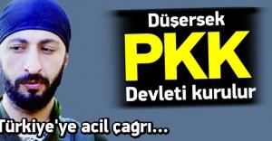 Çelik: Eğer düşersek PKK devleti...
