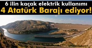 6 ilin kaçak elektrik kullanımı 4 Atatürk Barajı ediyor