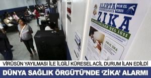 Dünya Sağlık Örgütü'nde Zika alarmı!