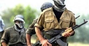 Varto'da 2 terörist öldürüldü
