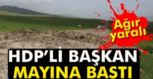 HDPli başkan mayına bastı